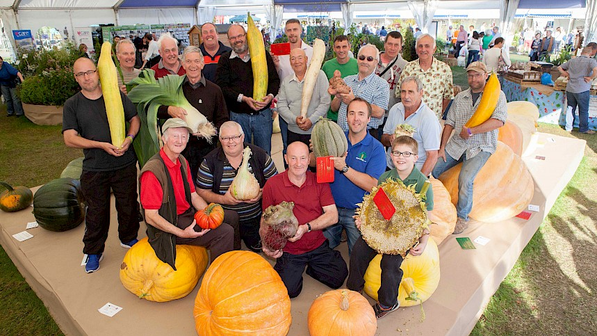 The Thick End of The Veg - 20 Top Giant Veg Facts For Top Harvest Show